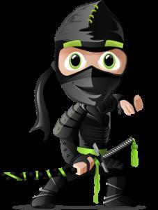 seo ninja doral